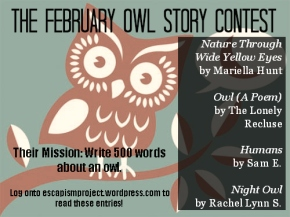 Which Two Owl Stories Were The Best?